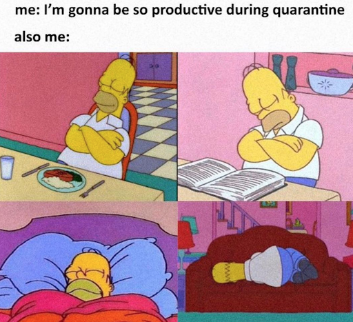 """A meme with text that reads """"Me: I'm gonna be so productive during quarantine. Also me:"""" followed by four different images of Homer Simpson from the cartoon series The Simpsons in different sleeping positions."""
