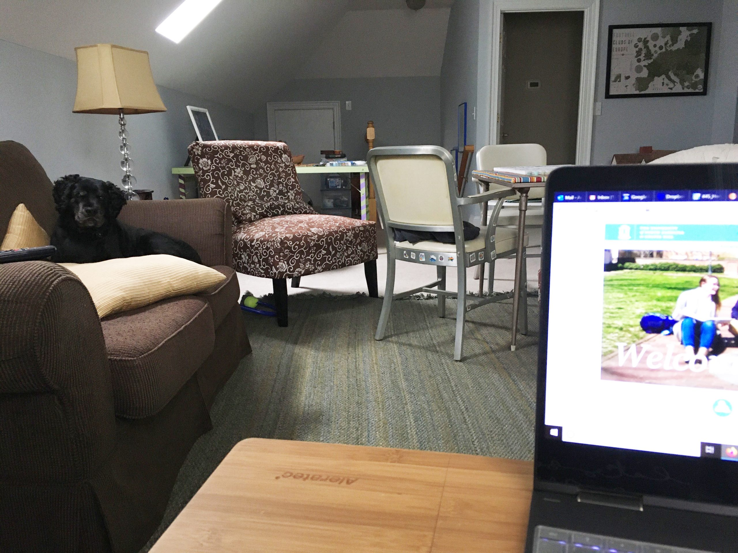 A photo of a laptop from the viewer's perspective with a clean, furnished room in the background and a black dog on the far couch.