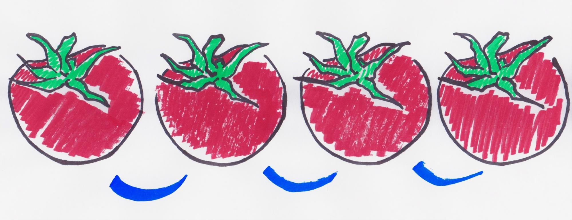 An illustration of four red tomatoes with a blue line drawn from one to the next to emphasize counting them.