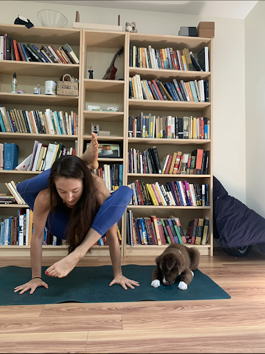 The author is on her yoga mat in a balancing pose, and her dog is laying on the mat beside her.