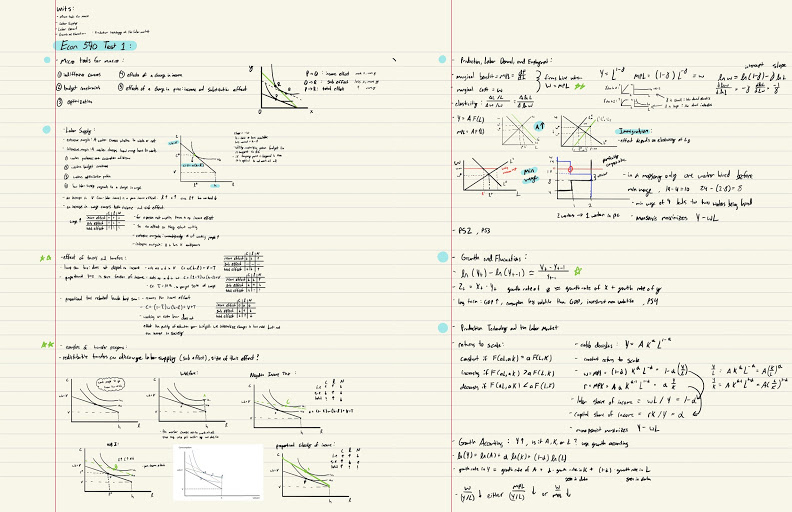 Pages of condensed notes includes neatly-written formulas and content, along with relevant graphs.