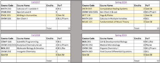 An Excel spreadsheet showing two columns with fall semesters on the left and spring semesters on the right.  Each column is divided into 4 rows, for a total of eight blocks corresponding to each semester of classes.  Each semester has a column for course code, course name, credits, and what the class is for (major, minor, etc.).